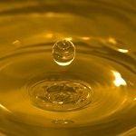 <br />OSTRICH<br />ostrich oil